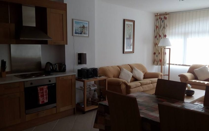 A luxurious 1 bed fully furnished apartment at The Vineyards complex at Aheloy