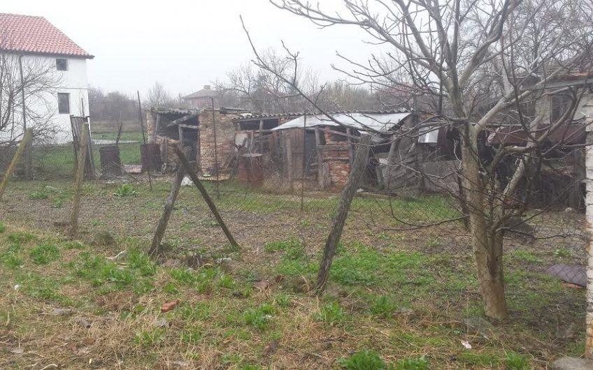 Renovation Project, Livada Burgas